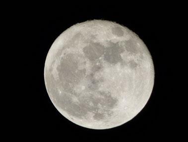 昨夜のSuper Moon!吸い込まれそうでした!ガオー