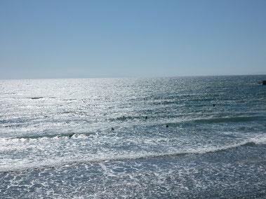 風で海面が潰されています。