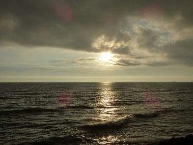今日は晴れたと思ったら、小雨が降ったり止んだり、夕方も雨が降って黒い雲が出て来ました。