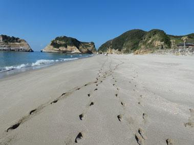 ふかふかの砂浜。