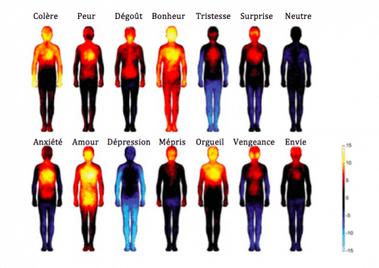 Biochimie des émotions - Lien entre mental-corps-émotions