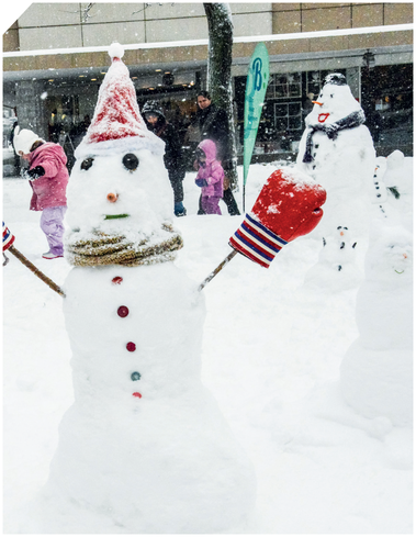 Who is the most beautiful snowman in the country? You'll find out at the snowman contest. Builders of all ages can't wait to beat the competition. Thanks to our SnowBOX, you will have enough snow to build all the creative sculptures you want to build.