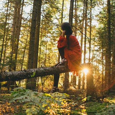 Eintauchen mit allen Sinnen - im Wald kommen wir auf andere Gedanken und können den Alltag vergessen.