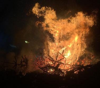 Weihnachtsbäume Verbrennen Altfriedland Oderbruch Oderland MOL (c)oderbruch-blog.de