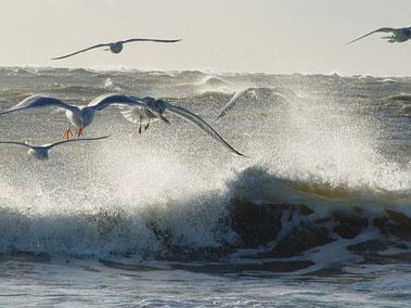 Andreas träumt von Urlaub, Freiheit, Sonne und Meer