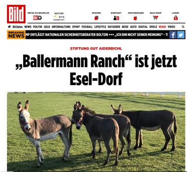 BILD über Eseldorf auf der Ballermann Ranch von Annette u. Andre Engelhardt