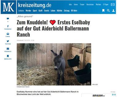 Kreiszeitung.de Sulingen/Diepholz 18.10.2019
