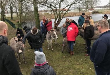 Bei den Eseln auf Gut Aiderbichl in Niedersachsen