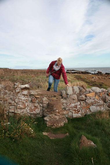Mauern überwinden auf dem Fife Coastal Path