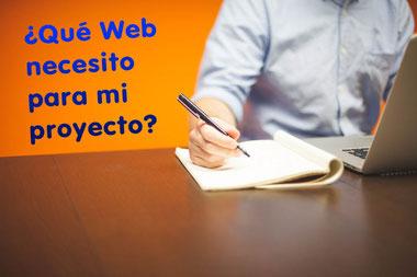Qué Web necesito, web profesional o genérica