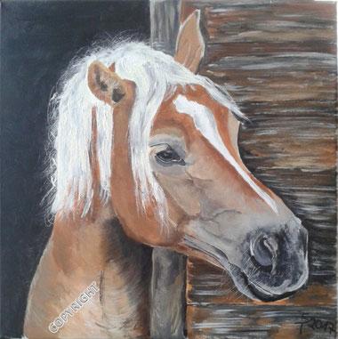 Pferdeporträt: Braunes Pferd mit heller Mähne schaut aus Stall heraus (Kopfporträt)