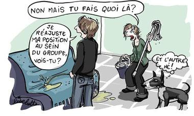 source: Ad canes, http://adcanes.fr/la-pa-pas-si-bete/