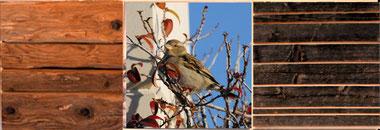 Altholzbild Trilogie der vier Jahreszeiten - Herbst