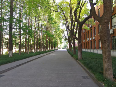 中国上海 華東師範大学 学生寮「国際交流服務センター」