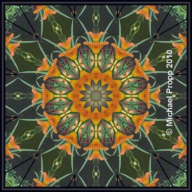 Wie durch´s Kaleidoskop geschaut