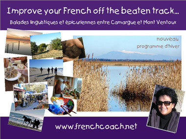 Winter trip Provence activity holidays for Francophiles french learner Camargue