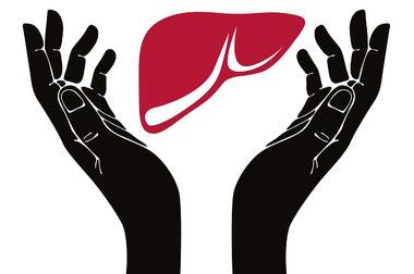Alimentos que optimizan la salud hepática