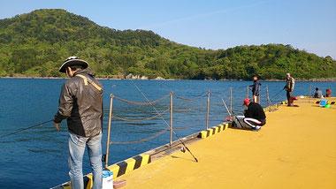 アジ釣り メガフロート