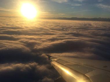 Blick aus dem Flugzeug beim Landeanflug auf Zürich
