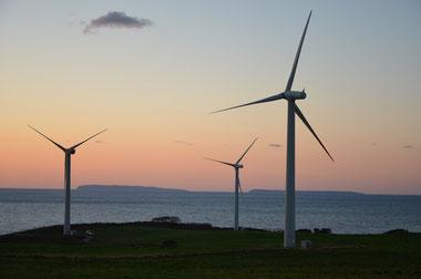 風の街の風車 39基の風車