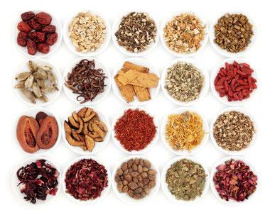 Traditionelle Chinesische Medizin beschäftigt sich viel mit Kräutern und deren Heilwirkung