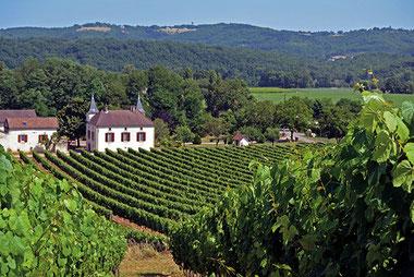 Domaine de Lavaur - AOC Cahors - 100 % malbec - bag in box - vigneron indépendant de france - vigneron récoltant