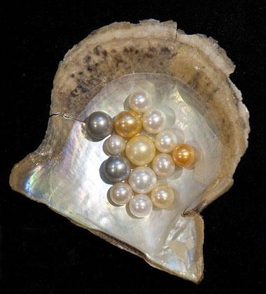 La nouvelle Jérusalem possède 12 portes, chaque porte correspond à une perle. La muraille contient donc 12 perles. Ce sont des perles organiques de grande valeur fabriquées par les mollusques à partir d'un objet irritant entouré de nacre (CaCO3).