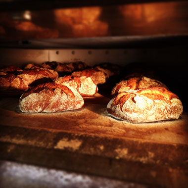Bäckerei Küster Göttingen Brot Seligkeitsdinge Ur-Kruste handgemacht Ruchmehl Steinofenbrot