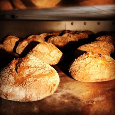 Bäckerei Küster Göttingen Brot Seligkeitsdinge Ur-Dinkel handgemacht Dinkelbrot Dinkelmehl Steinofenbrot