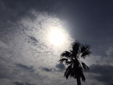 今日は雲が多い一日でした。時折出るお日様に感謝~