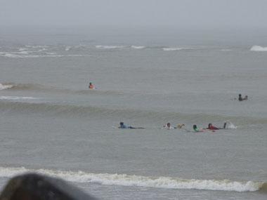 面は終日キレイで波はセット腰ぐらいでした。