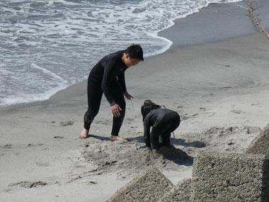 シメは砂蒸し、埋まらずにはいられニャイ(笑)
