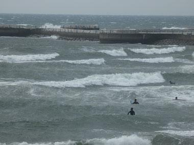 沖の白波が風の強さを・・・