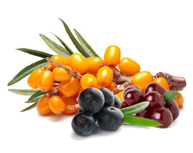 Wertvolle Aminosäuren unterstützen Ihr Diät und kurbeln die Fettverbrennung an