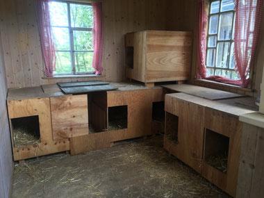 Die Husky-Lodge