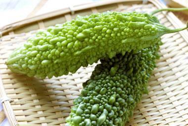 癌(ガン)予防に効くとされる野菜:ゴーヤ|乾燥ゴーヤが身体にとって栄養豊富
