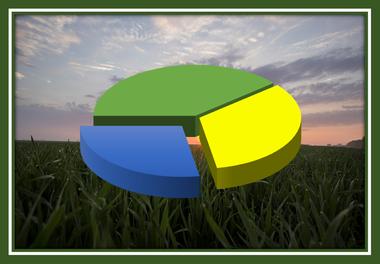landwirtschaftliche Beteiligungen, Beteiligung Kaufen, Beteiligung  verkaufen, Landwirtschaft, Investition, Rendite, Anteile kaufen, Anteile verkaufen, Gesellschaft,  Gesellschaftsanteile, landwirtschafts Gesellschaft, Erweb Anteile, Agraranteile