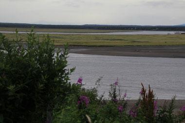 L'estuaire de la Kenai River