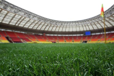 Report FIGC 2013