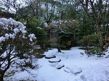 我が家の雪景色