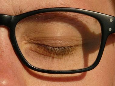 Augenlid samt Meibomdrüsen