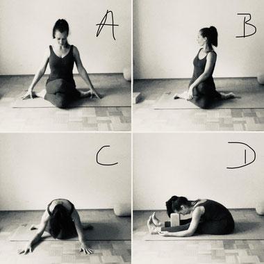 4 Yogaübungen: Gomukasana mit Variationen und Pashimottanasana