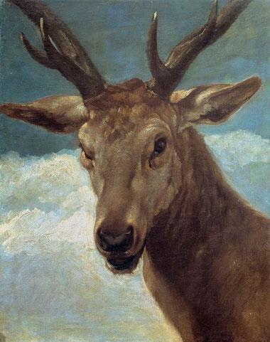 Голова оленя - Диего Веласкес