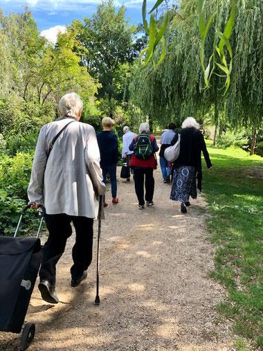 Seniorinnen Park Spaziergang