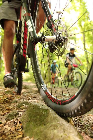 Nahaufnahme eines Mountainbike-Vorderreifens
