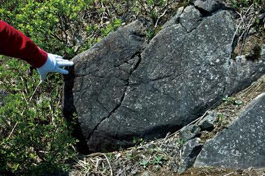 ドコノ森(田子町)で見つかる超古代文字(神代文字)が刻まれた謎の石オーパーツ 不思議な文字の入った石のほとんどは登山者によって持ち去られたというが、大きい石は重く持ち帰ることが出来ないので残っている。 2012年5月17日撮影