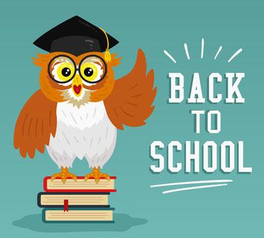 Eule, Vogelfutter, Wissenswertes, Lernen, Schule