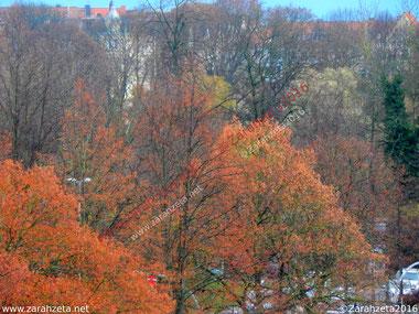 Herbstliche Aussicht auf den Stadtpark mit Indian Summer Farben