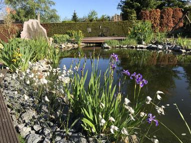 Ihr Garten Ist Unsere Leidenschaft Schroeder Wagners Webseite