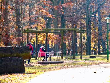 Spielplatz im Tiergarten Neustrelitz